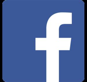 icona facebook social